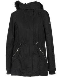 EA7 Coat - Black