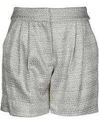 Giamba Shorts - Grey