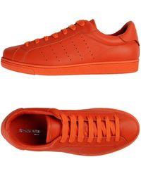 DSquared² Sneakers & Deportivas - Naranja