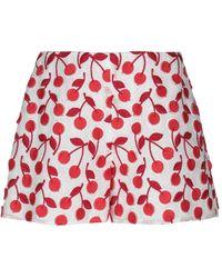 Giamba Shorts - Red