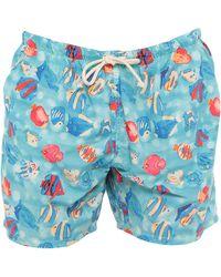 Drumohr Swimming Trunks - Blue