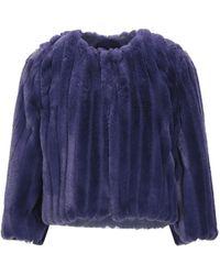 Imperial Teddy Coat - Purple