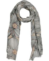 Camerucci - Scarves - Lyst