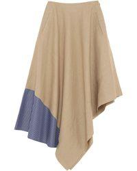 Loewe Knee Length Skirt - Natural