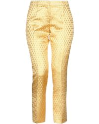 Femme By Michele Rossi Casual Trouser - Yellow