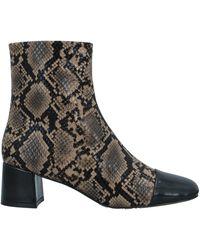 Bibi Lou Ankle Boots - Black