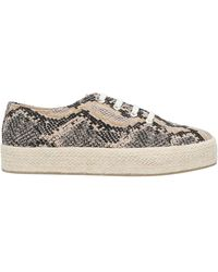 Madden Girl Trainers - Natural