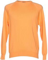 Drumohr Pullover - Orange