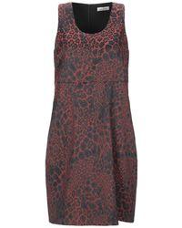 AT.P.CO Short Dress - Multicolour