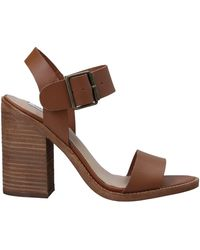 Steve Madden Sandals - Brown