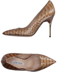 Luciano Padovan Court Shoes - Multicolour
