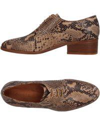 Sessun - Lace-up Shoe - Lyst