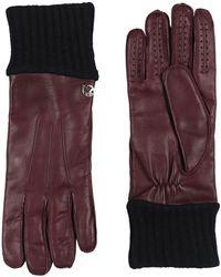Versace Gloves - Purple