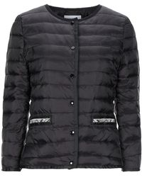 CafeNoir Synthetic Down Jacket - Black