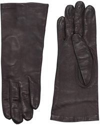 Maison Fabre Gloves - Brown