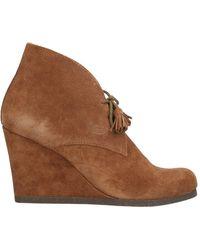 Scholl Shoe Boots - Brown