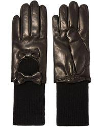 Portolano Gloves - Black