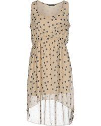 Rise Of Dawn - Short Dress - Lyst