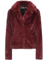 Goosecraft Teddy Coat - Purple