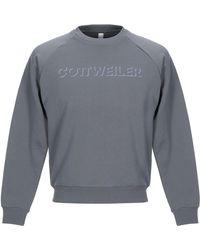 Cottweiler Sweatshirt - Gray