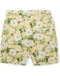 Engineered Garments Shorts & Bermudashorts - Gelb