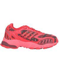 adidas Sneakers & Tennis basses - Rouge