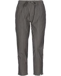 B'Sbee Casual Trouser - Gray