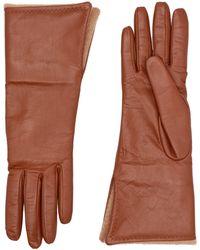 Max Mara Gloves - Brown