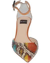 Rodo Court Shoes - Orange