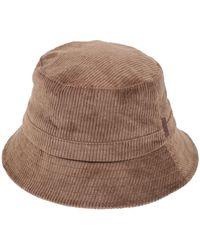 Barts Hat - Brown
