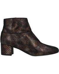 Paola D'arcano Ankle Boots - Black