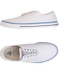 Sperry Top-Sider Low Sneakers & Tennisschuhe - Weiß