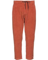 Caterpillar Cropped Pants - Multicolor