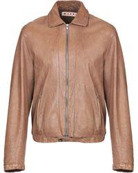 Marni Jacket - Brown