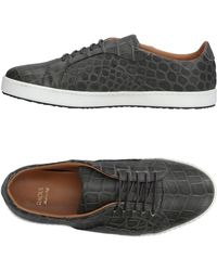 Raoul - Low-tops & Sneakers - Lyst