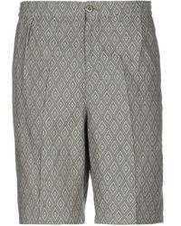 Stussy Shorts et bermudas - Gris