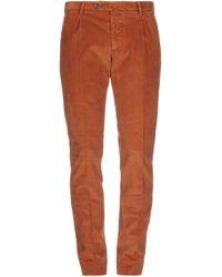 Briglia 1949 Pantalone - Marrone