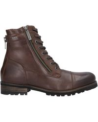 Pepe Jeans Ankle Boots - Brown