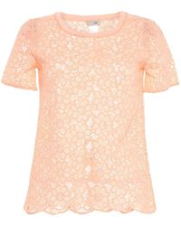 SCEE by TWINSET Blusa - Rosa
