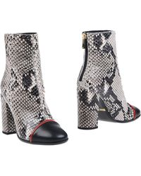 Just Cavalli - Ankle Boots - Lyst