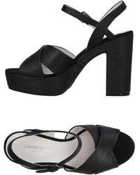 Lumberjack Sandals - Black