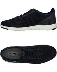 Geox Low Sneakers & Tennisschuhe - Blau