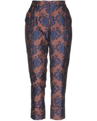 Jucca Casual Trousers - Brown