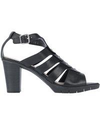 The Flexx Sandals - Black