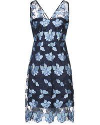 Elie Tahari Floral-appliquéd Tulle Dress Blue