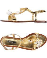 Dolce & Gabbana | Seashell Sandals | Lyst