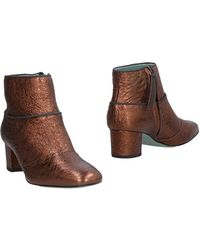 Paola D'arcano Ankle Boots - Brown