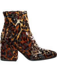 Coast Ankle Boots - Brown