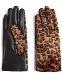 TOPSHOP Gants léopard en simili cuir - Marron