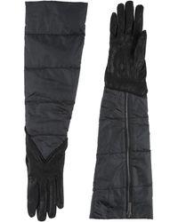 Gentry Portofino Gloves - Black